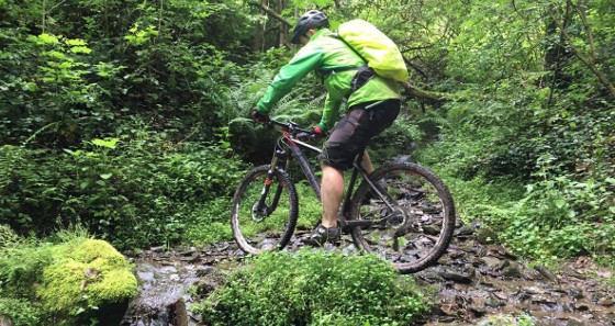 Mountainbiker in Aktion