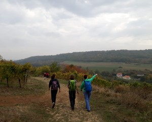 Hiking at Moselle (30)