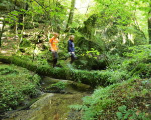 Hiking in Mullerthal (8)