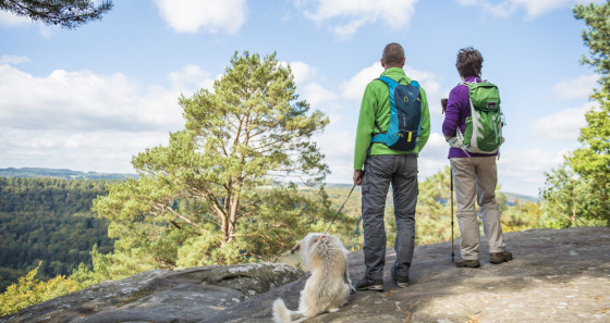 If you enjoy hiking, why not discover the Mullerthal Region – Luxembourg's Little Switzerland via the Mullerthal Trail with its 112 km of beautiful views, strange rock formations and cultural highlights. (Copyright: Pulsa Pictures/LFT)